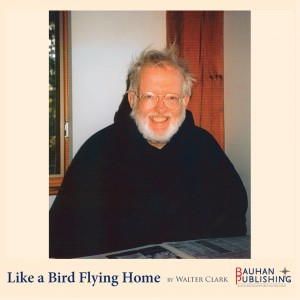 Like-a-Bird-Flying-Home_-04