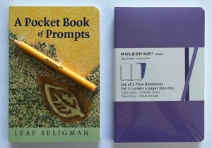 pocket book package